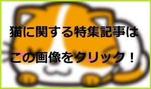 猫のまとめ記事